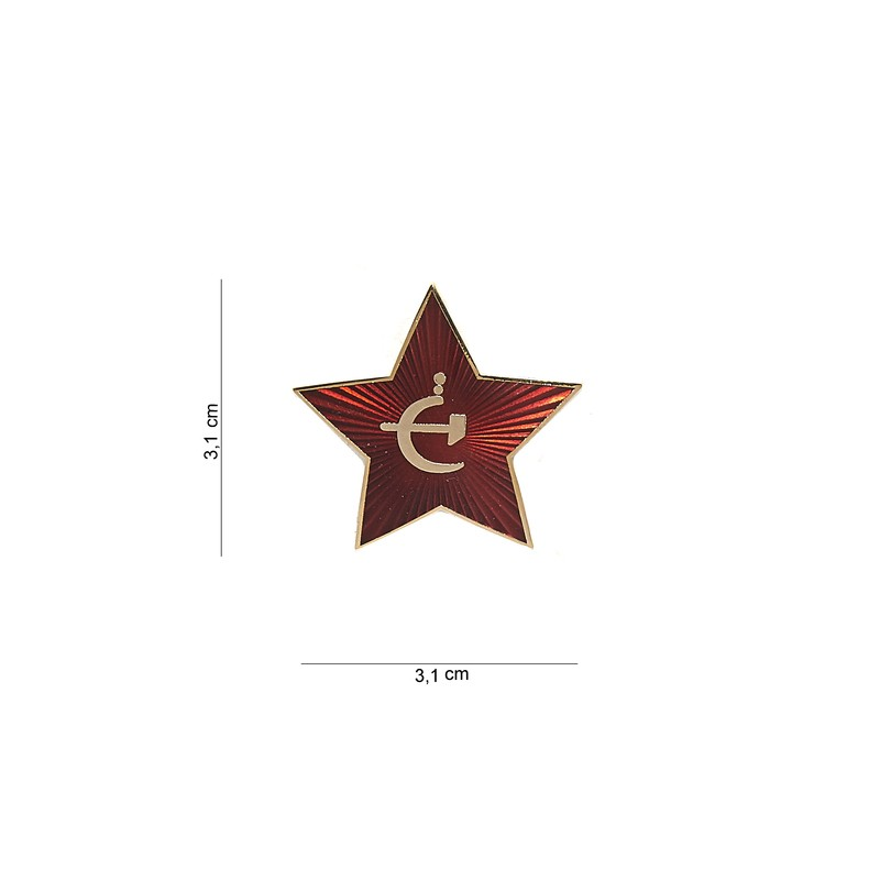 Badge : drill sergeant identification badge
